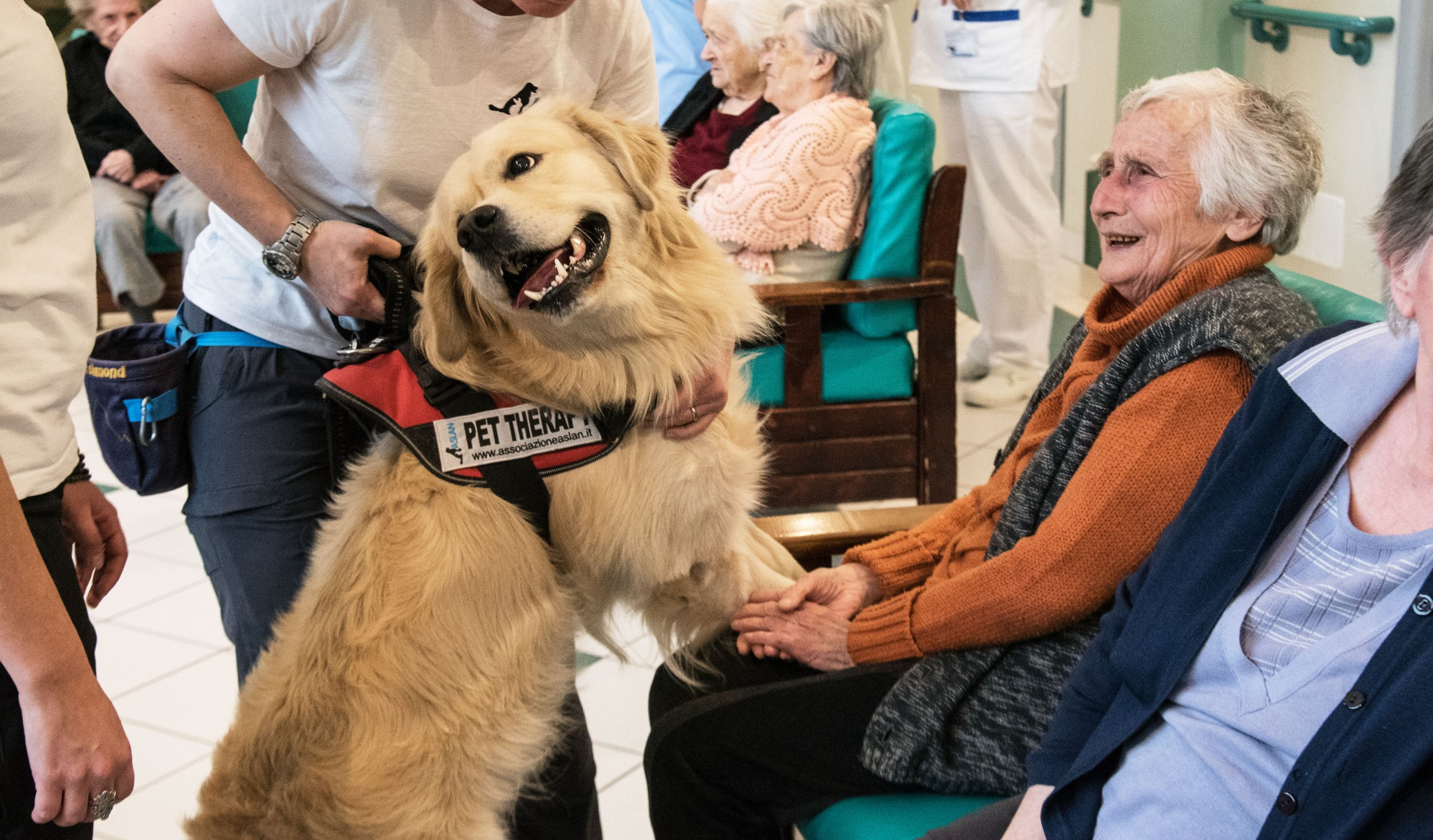 Pet-Therapy-in-ospedale
