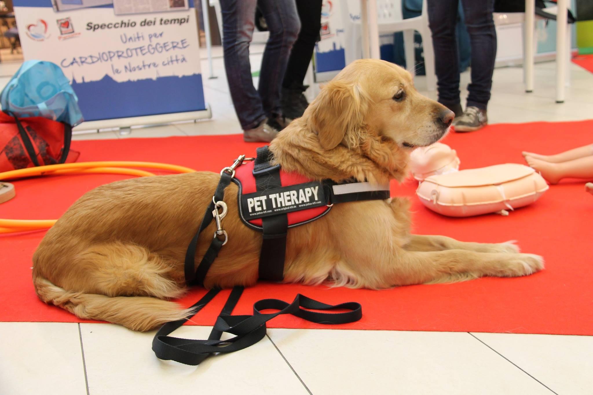 pet-therapy-cse-benefici-attivita