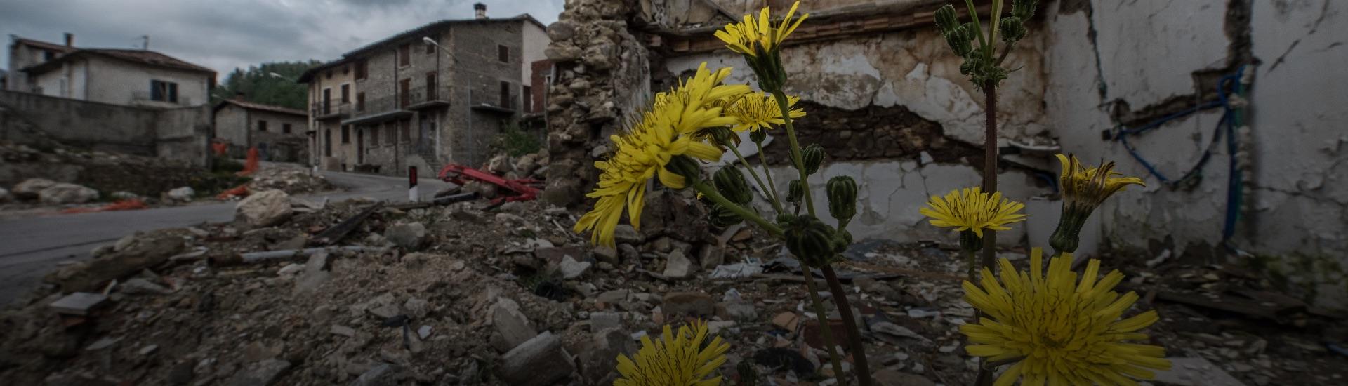 donazioni-terremoto-online